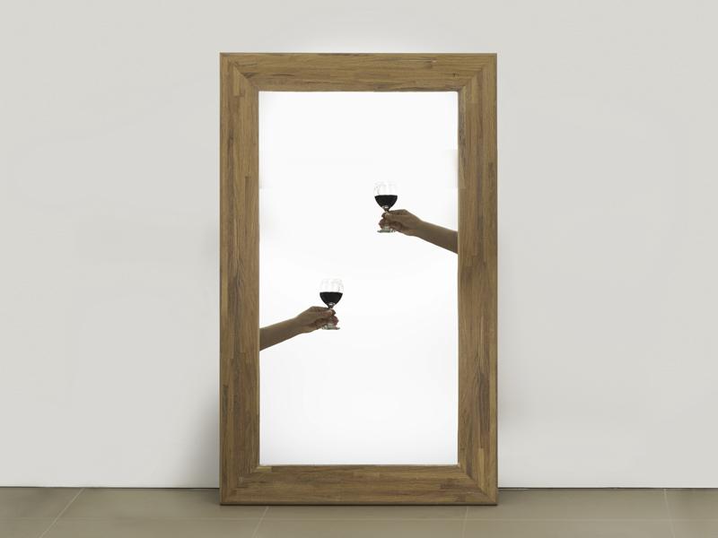 WMD mirrors D